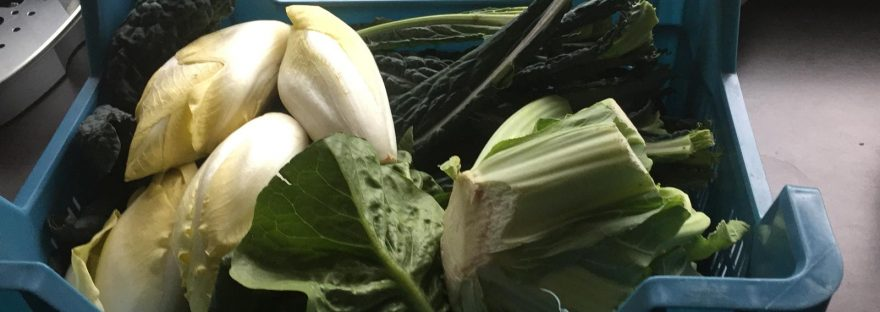 biologisch groente abonnement